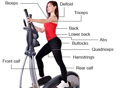 Elliptical Machine Workout Tinymuscle